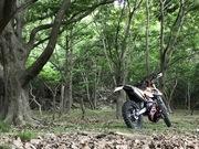 瀬戸内でバイク乗ってます。