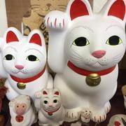 小山酒店@人形町のブログ