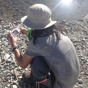 Nollyco Mountain Life In Whistler