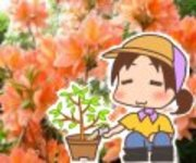 「富士園芸」花屋の嫁ブログ