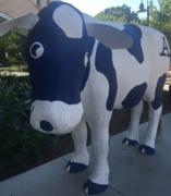牛ときどき午 米国西部ユタ発