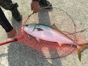 HARU-FISHのお気楽アウトドアライフ