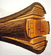 Doi Lumber