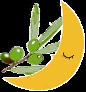 オリーブオイルカフェのブログ