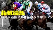 指数競馬〜馬連少点数で利確を狙う予想ブログ