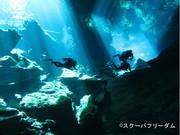 セノーテ&コスメル島ダイビング: スクーバフリーダム