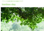 banboo day