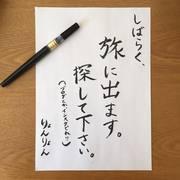 りょん日記