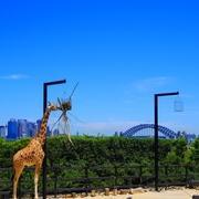 オーストラリアに2年住んでみました。