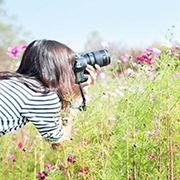 世界を旅するカメラ