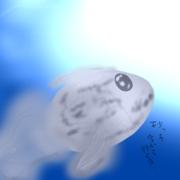 金魚ランド