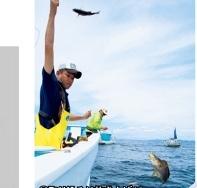 釣り大好き!FishingLife