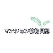 マンション植物日記