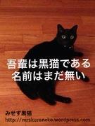 みせす黒猫のおすすめランチ〜食べたもので作られる〜