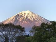 富士のふもとの行政書士事務所