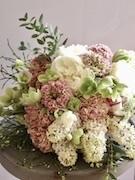 オランダの花やさん