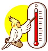 毎日の体感温度