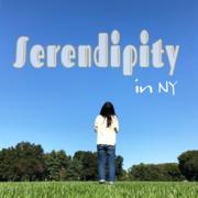 NY Serendipity