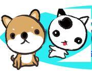 動物の薬剤師、黒田さおりの 小さな命を守りたい