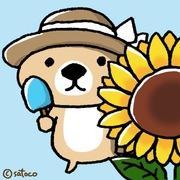 *ひまわりdays*