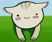 子猫クラブ