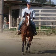 還暦からの乗馬日誌