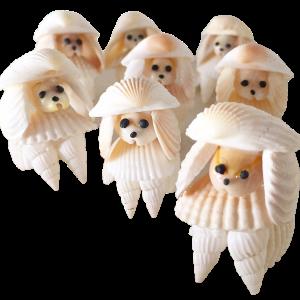 貝殻こけし舎