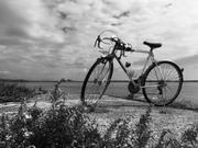 Chiroの自転車