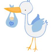 妊娠するために覚書き、妊活ブログ