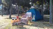 キャンプとあれこれ
