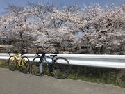 はじそんの自転車ブログ時々バイク(笑)