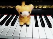 広島市、五日市、まつうらピアノ教室