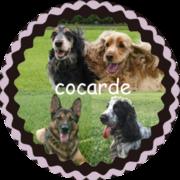 cocarde
