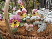 bowerbird garden 〜私はニワシドリ〜