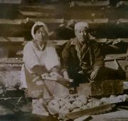 銀篭園 みらイモ農家 | 静岡の伝統芋農家
