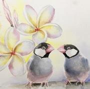 鳥大好きハワイ暮らし