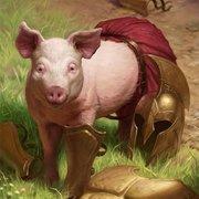 時子さまの豚さんのプロフィール
