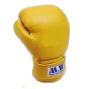 Boxingオタクのsports観戦記