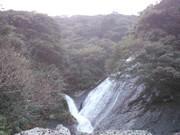 瀑布を昇る鯉のぼりプロジェクト
