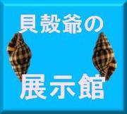貝殻爺の展示館