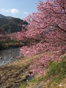 東海(愛知、静岡、岐阜、三重)精子提供&妊活サポート