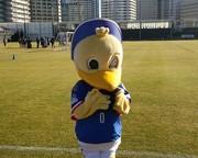 サッカーが好き、マリノスが好き。(ガンバも少し)