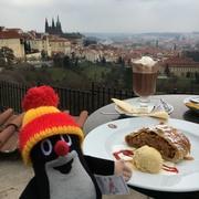 Děkuji Czech 〜おとぎの国へ海外留学〜
