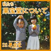果宝堂blog