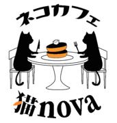 猫novaブログ