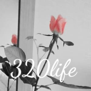 320life