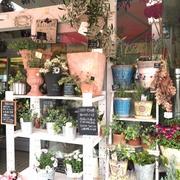 〜お花のある生活〜山形市 アライ花店のブログ