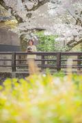 京都観光カメラマン