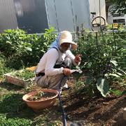 長野県須坂市の小さな農園〜プチてんとう虫農園