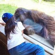自閉症スペクトラムの子どもの育児ブログ
